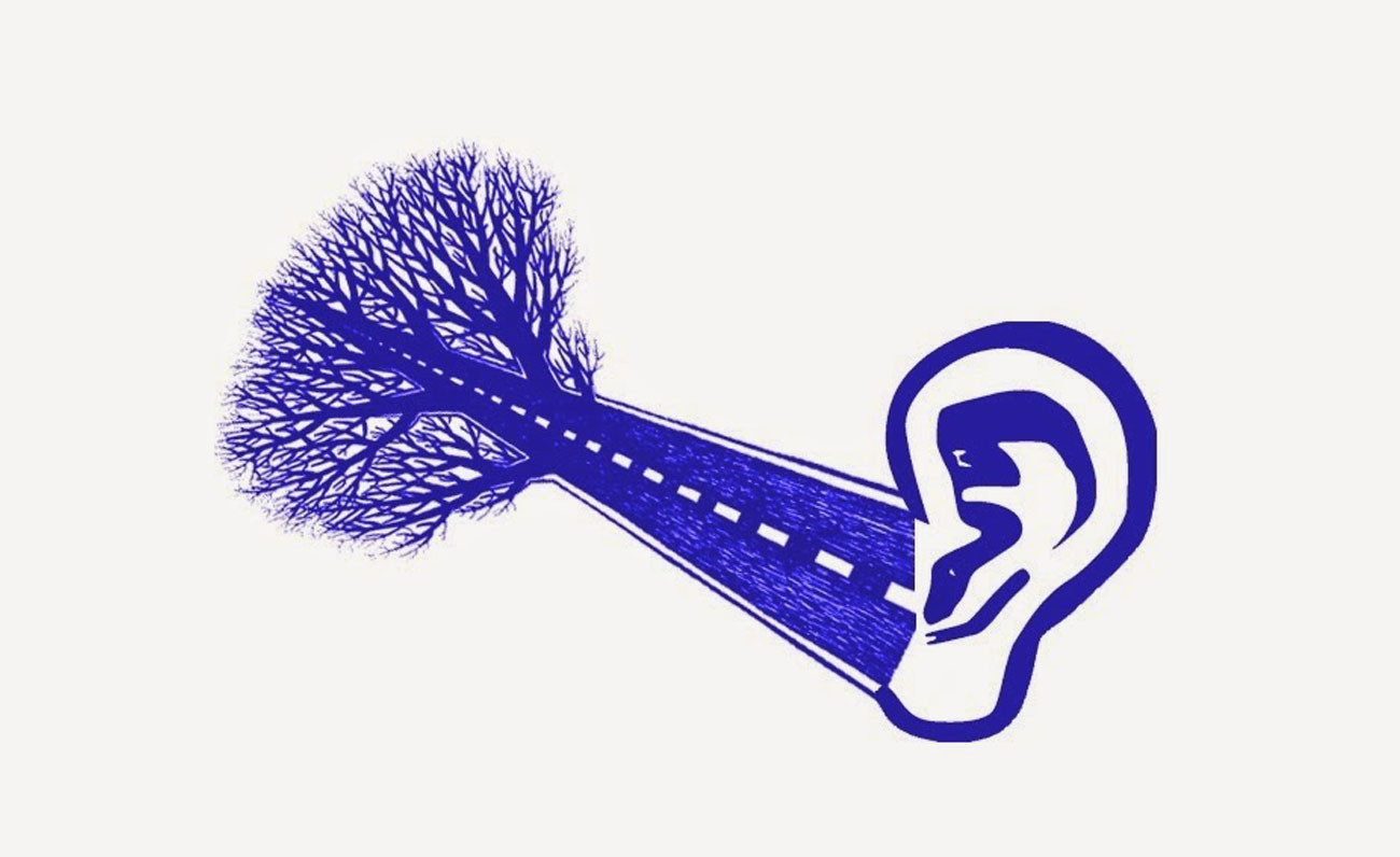 sindrome-del-procesamiento-auditivo-central
